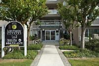 Two Bedroom/One Bathroom For Rent at Larchway Gardens - 2475...