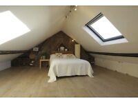 Lovely double loft room St Werburghs £600