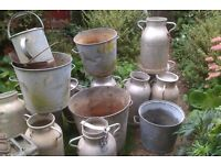Old milk churns and galvanised tubs plant pots priced individually