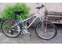 GIANT LADIES MOUNTAIN BIKE WITH SMALL FRAME.