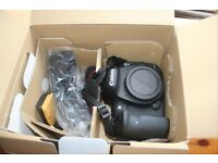Canon EOS EOS 7D Mark II with a EFS 10-22mm F/3.5 USM WIDE ANGLE LENS