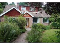 4-5 BEDROOM HOUSE FOR RENT on 3/4 acre end of Cul-de-sac bordering Ashdown Forest near Michael Hall