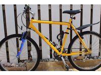 Large frame mountain bike