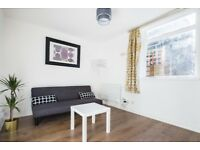 short term let - Large 1 bed flat with garden