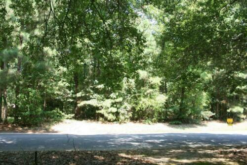 Secluded Beauty With Drive Up Access .15 Acres In Chicot County, AR - $2.25