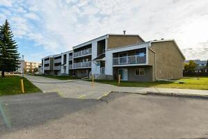 Morningside Estates - 17119-64 Ave.