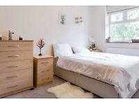 Clear Double Room in Pimlico area
