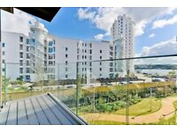 A large apartment situated on the 2nd floor of this brand new river side development in Royal Wharf