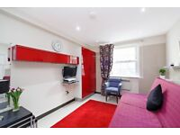 Big and Bright Luxury Studio flat, **STUDENTS CALL NOW FOR BEST PRICE** Close to LBS/Regent