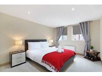 stunning 2 bedroom flat !