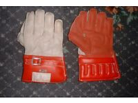 cricket Wicket Keepers Gloves (New Boys)