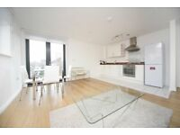 Great 1 bed, Shepherd House, 2 Annabel Close, Poplar, London, E14, Canary Wharf, close to DLR.