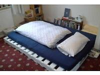 Room in lovely Clapton flatshare