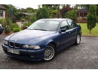 BMW 540i E39 5 Series not M5 M3 E300 330i 535i 530i 525i
