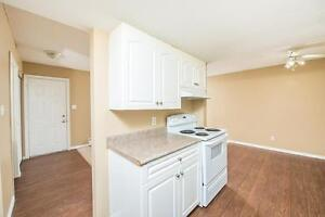 Amazing 3 bedroom Townhome! Pay only $800.00 for the first year! Edmonton Edmonton Area image 5