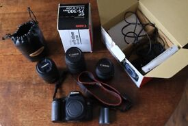 Canon 30d with various lenses for sale