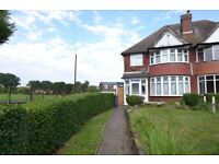 Two Rooms in Shared House - £350/£450pcm INC BILLS