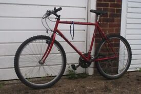 Townsend Maximum 15 speed British hand-built bike