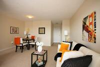 Quiet Cul-De-Sac in Westdale! Renovated-Modern-Comfortable