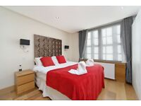 2 DOUBLE BEDROOMS FLAT / HYDE PARK-OXFORD STREET / PORTER / TOP LOCATION