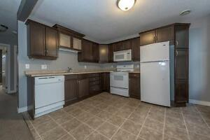 GORGEOUS 2 BEDROOM APARTMENT BY WORTLEY London Ontario image 1
