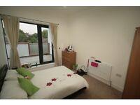 Beautiful, Modern 1 Bed Flat in Camberwell