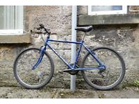 Blue Raleigh Bike, ONLY £30!