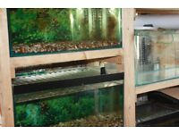 aquariums on racking