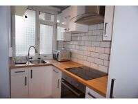 DSS welcome Modern 1 bedroom Flat 5 minutes away from Bethnal Green station and Victoria Park