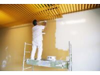 Multi Skilled services Maintenance Professional Handyman All round D.I.Y help Painting
