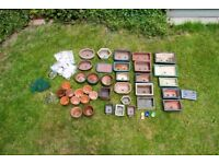 Bonsai Pots Collection A