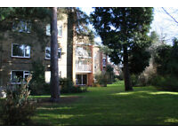 Super 2 Bed First Floor Flat, Eltham, South East London SE9 - PRIVATE LANDLORD