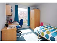 Standard Room at Broadgate park available NOW