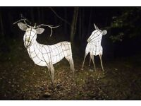 Lost - Reward for Finding Two Large Illuminated Deer Sculptures