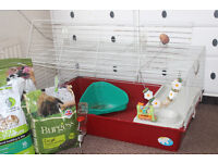 Rabbit/ small animal cage with accessories (including carriage cage)