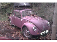 1979 Mexican Beetle LHD