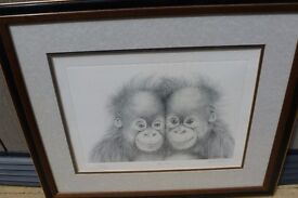 "These are ""The Twins"" by the celebrated artist Peter Hildick . Cheeky young Orangutans, Mischievous"