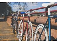 Bicycle Business Stock for sale - quick sale needed, heavily discounted.