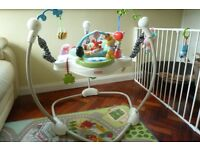 Jumperoo -Discover and Grow (MALONE ROAD)
