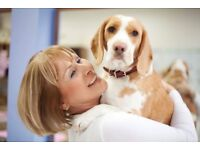 Dog Home Holiday Carers needed in Lancaster/Blackpool/Preston area - earn upto £196.00 per week