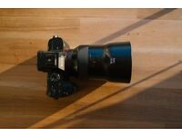 Sony A7ii & Zeiss Batis 85mm F1.8