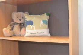 cushions for Teacher