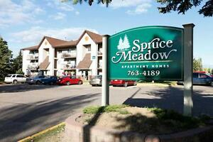 Move In Today! In-suite Laundry. Call 306-314-2035