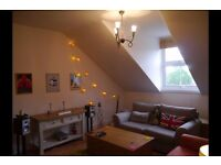 Large 1 bedroom flat to rent in Central Surbiton - private let, no agencies please