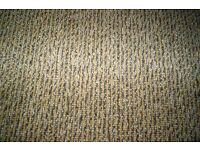 Carpet - New unused Telenzo 100% wool loop pile Heavy domestic/contract approx. 5.7 square metres