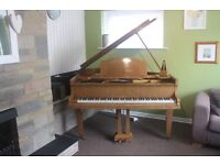 A beautiful Baby Grand Piano, lots of character, keeps its tune, a few scratches as its moved around