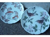 Royal Albert Bone china - 2 decorative plates