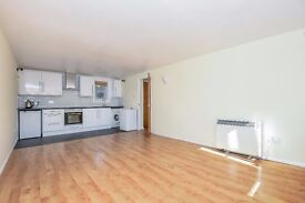 Quirky and modern ground floor Maisonette flat to let located just by Brockley station - Foxwell St