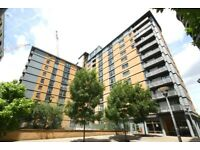 Fantastic Modern One bedroom Flat in Popular Trentham Court, W3 Close to North Acton Central Line