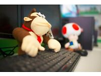 Customer Support Executive for -A well Known Branded Family Game Console company Founders of Mario